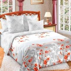 Купить КПБ Перкаль 2-спальное с европростыней 006800202 в розницу