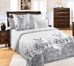 Купить КПБ Бязь 2-спальное с европростыней 006800243 в розницу