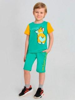 Купить Бермуды для мальчика 042000333 в розницу