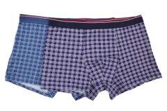 Купить Трусы мужские (упаковка-2 шт) 066001670 в розницу