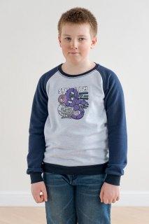 Купить Свитшот  для мальчика подростковый сине-серый 076000344 в розницу