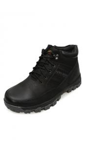 Купить Ботинки мужские 003300251 в розницу