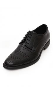 Купить Туфли мужские 004200105 в розницу