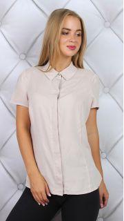 Купить Блузка 015300586 в розницу