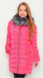 Купить Куртка женская 024600390 в розницу
