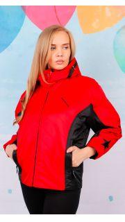 Купить Куртка женская 024600431 в розницу