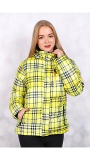 Купить Куртка женская 024600447 в розницу