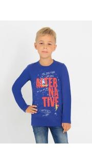 Купить Джемпер для мальчика 048000329 в розницу