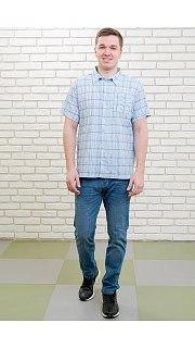 Купить Рубашка мужская 096100288 в розницу